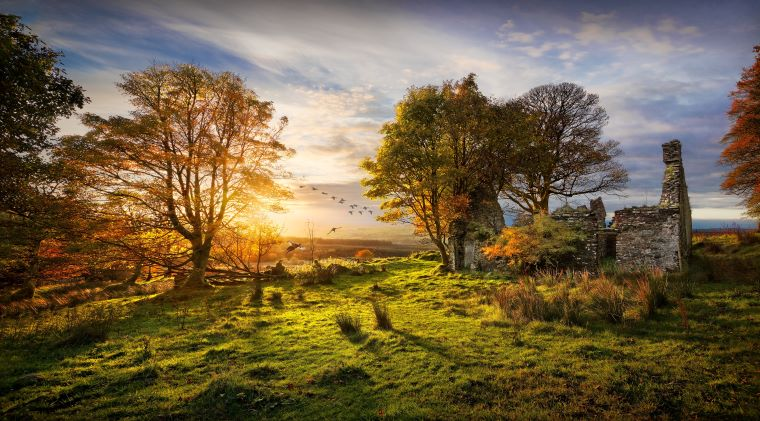 Fall For Photography ~ Tony Moore